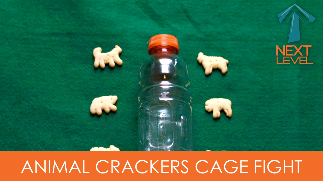 animal crackers cage fight, small group games